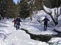 Bartošovice v Orlických horách - chalupa k pronajmutí - 5