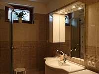 Koupelna - pronájem apartmánu Deštné v Orlických horách