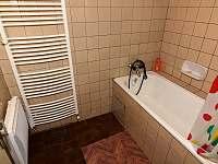 Koupelna přízemí - chalupa k pronájmu Dolní Morava