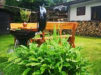 gril s venkovním sezením - chata k pronajmutí Rokytnice v Orlických horách