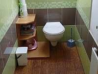 WC č.1 - pronájem chalupy Červená Voda - Dolní Orlice
