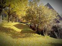 Nedvězí v Orlických horách - chalupa k pronajmutí - 4