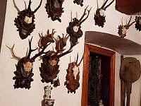 Atelier přízemí - Říčky v Orlických horách
