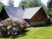 Chalupa U Paroháče Říčky v Orlických horách, exteriér léto - ubytování Říčky v Orlických horách