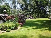 Zahrada - chalupa k pronajmutí Říčky v Orlických horách