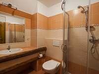 koupelna ap.3. - chalupa k pronajmutí Čenkovice