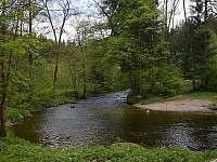 pohled na řeku - chata k pronájmu Vamberk - Peklo nad Zdobnicí