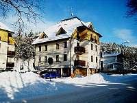 ubytování Skiareál Sedloňov Apartmán na horách - Deštné v Orlických horách