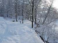 Areál v zimě - chata k pronájmu Olešnice v Orlických horách