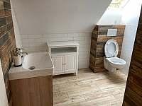 Koupelna a WC - apartmán Adéla - Červená Voda - Dolní Orlice