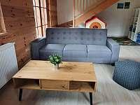Obývací pokoj - apartmán Lukáš - k pronajmutí Červená Voda - Dolní Orlice