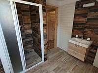 Apartmán Adéla - sprchový kout - k pronajmutí Červená voda