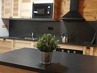 Apartmán Lukáš - kuchyň - k pronájmu Červená voda