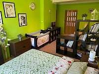 Apartmán na horách - dovolená  rekreace Orlické Záhoří