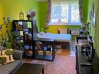 U Divoké Orlice Orlické Záhoří - apartmán ubytování Orlické Záhoří