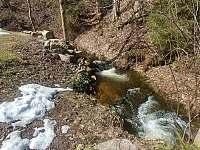 Roubenka u potoka - roubenka - 36 Bartošovice v Orlických horách