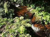 Roubenka u potoka - chalupa ubytování Bartošovice v Orlických horách - 9