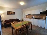 Cekový pohled na kuchyni s obývacím prostorem - pronájem apartmánu Říčky v Orlických horách