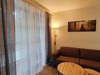 Francouzské okno s výstupem na balkón - pronájem apartmánu Říčky v Orlických horách
