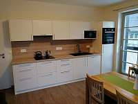 Kuchyně - apartmán ubytování Říčky v Orlických horách