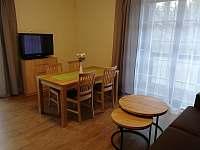 Obývací prostor - apartmán k pronájmu Říčky v Orlických horách