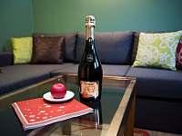 Chata Anička - kuchyň s obývacím pokojem - pronájem Přívrat
