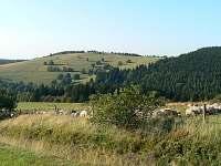 Pohled na Panský kopec z louky nad chalupou.