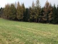 okolní příroda - pronájem chaty Uhřínov pod Deštnou