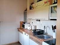 kuchyně v přízemí - roubenka k pronajmutí Orlické Záhoří