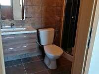 wc v přízemí - roubenka k pronájmu Orlické Záhoří