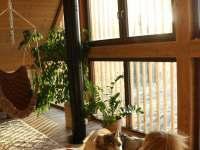 Chalet Astré - chata - 13 Orlické Záhoří