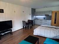 Apartmán DANIEL - apartmán k pronájmu - 6 Říčky v Orlických horách