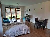 Ubytování v apartmánu v Říčkách v Orlických horách - k pronájmu