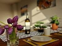 Apartmán Harmonie - k pronájmu Říčky v Orlických horách