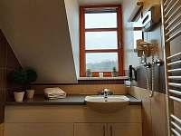 Apartmán Harmonie - koupelna - Říčky v Orlických horách
