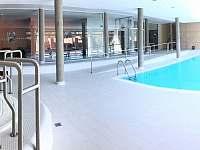 Wellness - bazén, vířivka - Říčky v Orlických horách