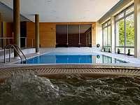 Wellness - vnitřní bazén - apartmán k pronájmu Říčky v Orlických horách