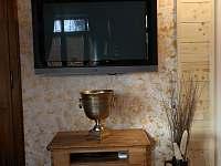 Ubytování pod lípou - pronájem apartmánu - 7 Dobruška - Pulice