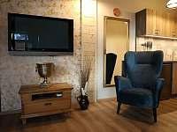 Ubytování pod lípou - apartmán k pronájmu - 6 Dobruška - Pulice