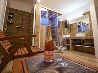 Chalupa Horní Orlice - sauna, sprcha - pronájem
