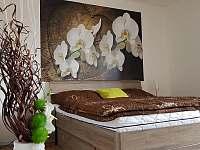 Ložnice, Apartmán Mařinka 201 - ubytování Říčky v Orlických horách