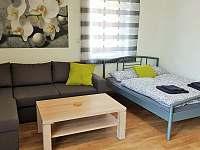 Obývací pokoj + manželská postel, Apartmán Mařinka 201 - Říčky v Orlických horách