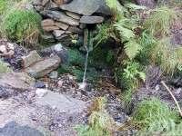 Tipy na výlet - studánka pod Pěticestím - Říčky v Orlických horách