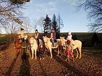 Jízdy na koních - Dolní Dobrouč