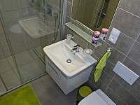 Apartmán 1+kk i 2+kk má samostatnou koupelnu se sprchovým koutem a wc. - k pronájmu Říčky v Orlických horách