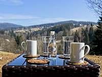 Apartmán 1+kk i 2+kk má samostatnou venkovní terasu s krásnými výhledy. - ubytování Říčky v Orlických horách