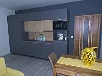 Apartmán 1kk s kompletně vybavenou kuchyní. - Říčky v Orlických horách