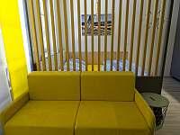 Apartmán 1kk s pohodlnou manželskou postelí a rozkládací sedačkou. - Říčky v Orlických horách