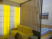 Apartmán 1kk s pohodlnou manželskou postelí a rozkládací sedačkou. - pronájem Říčky v Orlických horách