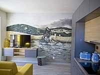 Apartmán 2kk, TV, WIFI, kompletně vybavená kuchyně. - k pronajmutí Říčky v Orlických horách